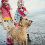 dog-walking-in-ireland-02