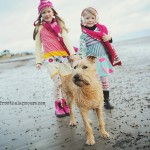 dog-walking-in-ireland-03