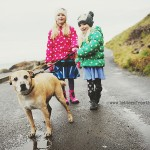 dog-walking-in-ireland-04