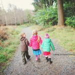 walking-Tolymore-Forest-park-01