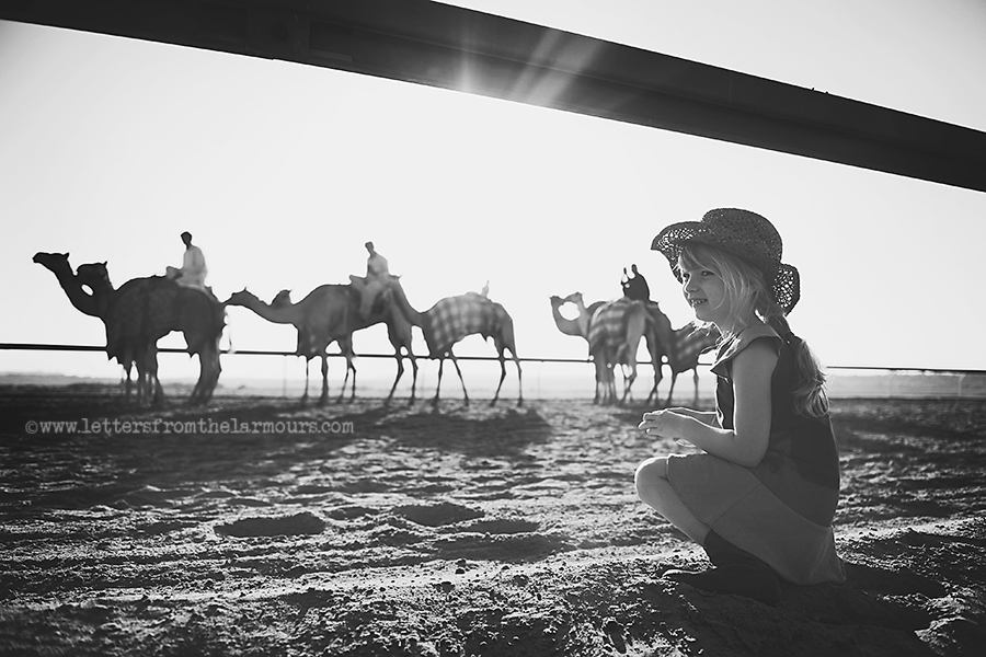 Postcard from the Abu Dhabi Camel Racing