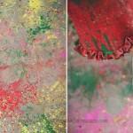 Larmour—Holi-India-014